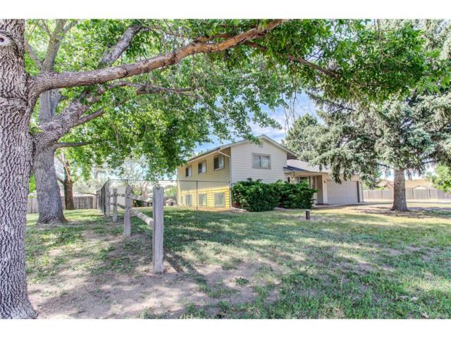 4201 Date Street, Colorado Springs, CO 80917 (MLS #2814023) :: 8z Real Estate