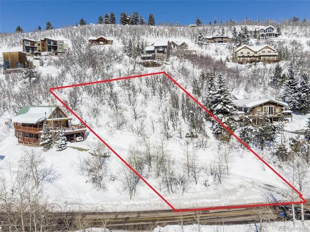 2676 Burgess Creek Road, Steamboat Springs, CO 80487 (#2815277) :: The Peak Properties Group