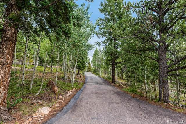 10439 Christopher Drive, Conifer, CO 80433 (#2821336) :: The DeGrood Team