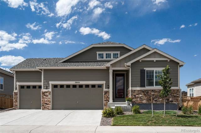 7055 Greenwater Circle, Castle Rock, CO 80108 (#2822741) :: Peak Properties Group