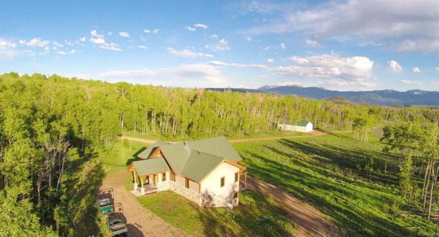 11394 County Road 11, Kremmling, CO 80459 (#2825590) :: The Heyl Group at Keller Williams
