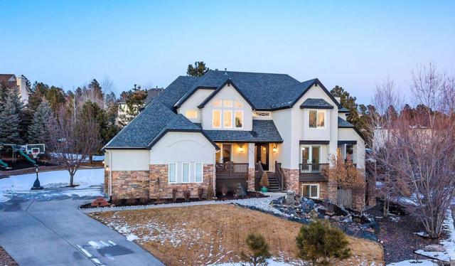 8435 Owl Roost Court, Parker, CO 80134 (#2826539) :: The HomeSmiths Team - Keller Williams