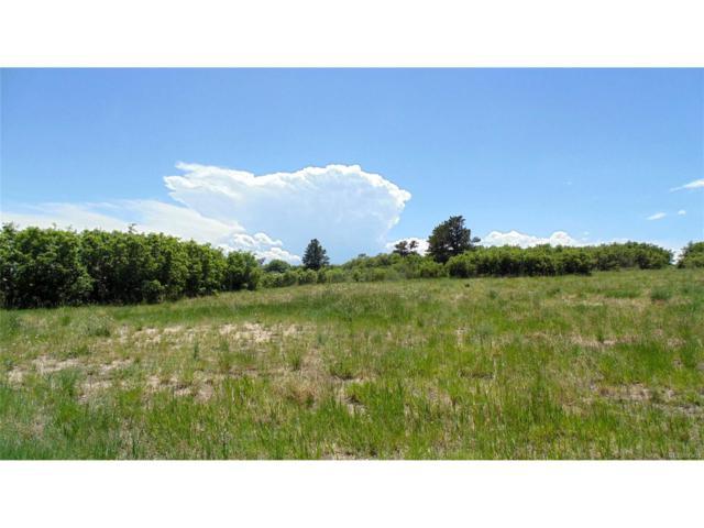 1561 White Fir Terrace, Castle Rock, CO 80108 (MLS #2829320) :: 8z Real Estate