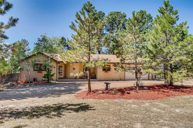 11332 Mustang Road, Franktown, CO 80116 (#2829595) :: The DeGrood Team
