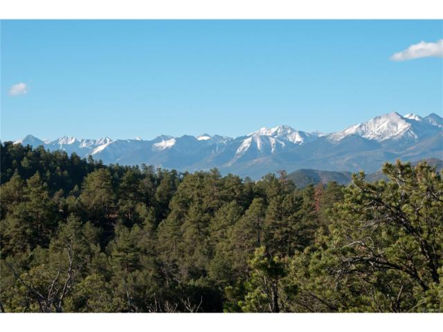 637 Thunderbird Drive, Cotopaxi, CO 81223 (#2834547) :: Bring Home Denver