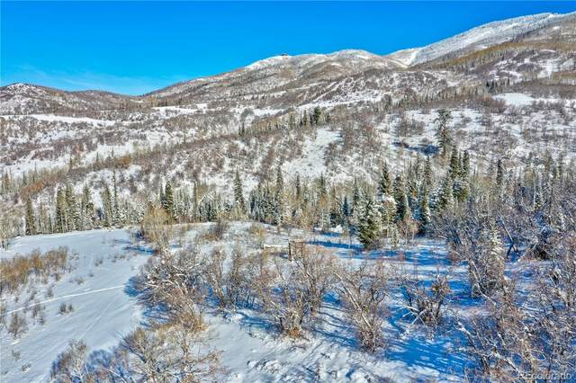 34500 Panorama Drive, Steamboat Springs, CO 80487 (#2835188) :: Wisdom Real Estate
