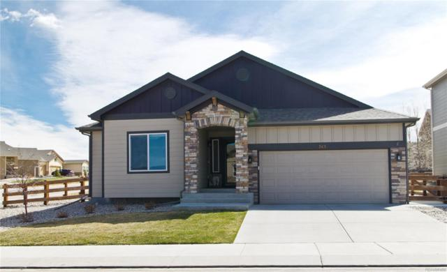 743 Tailings Drive, Monument, CO 80132 (#2838478) :: Keller Williams Action Realty LLC