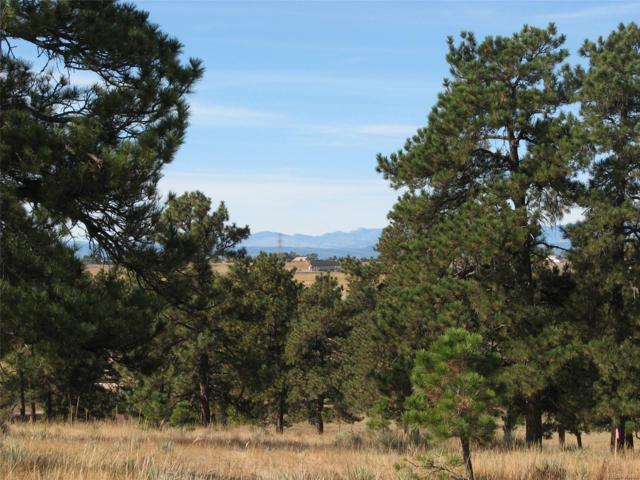 00014 Shadow Pines Road, Parker, CO 80138 (#2838744) :: Compass Colorado Realty