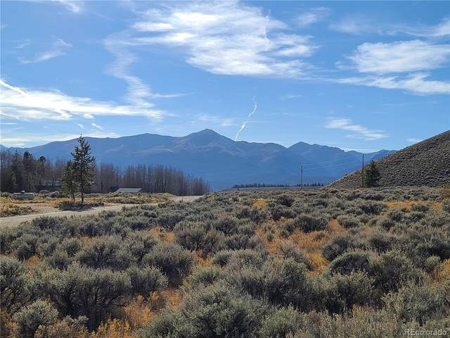 185 Empire Valley Drive, Leadville, CO 80461 (MLS #2839362) :: 8z Real Estate