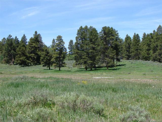 Halter Trail, Oak Creek, CO 80467 (#2839864) :: The Tamborra Team