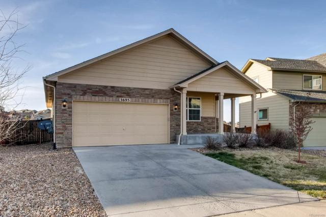 3695 Amber Sun Circle, Castle Rock, CO 80108 (#2841472) :: Hometrackr Denver