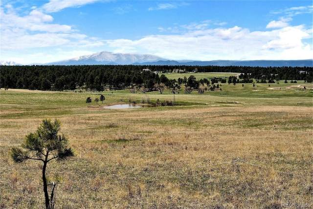 00 E Palmer Divide Avenue, Larkspur, CO 80118 (#2841827) :: The Harling Team @ Homesmart Realty Group