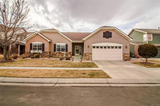 1551 Wildflower Court, Brighton, CO 80601 (#2842371) :: The DeGrood Team