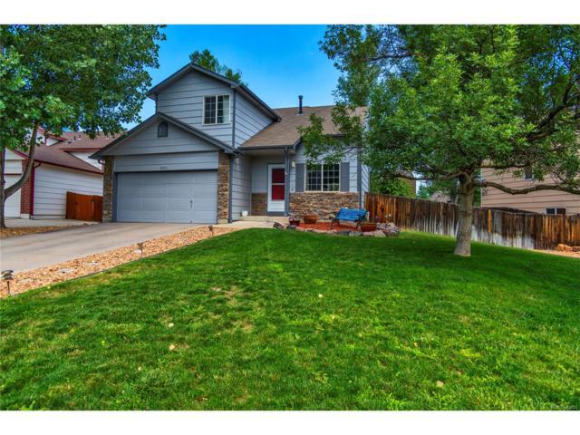5301 E 129th Way, Thornton, CO 80241 (MLS #2849134) :: 8z Real Estate