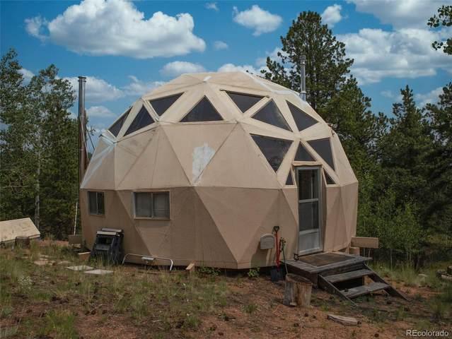 549 Vindicator Drive, Cripple Creek, CO 80906 (#2849419) :: The HomeSmiths Team - Keller Williams