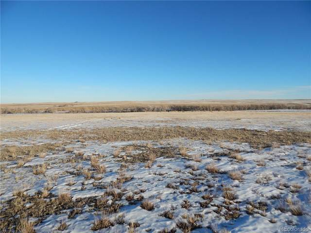 13414 Buck Draw Point, Kiowa, CO 80117 (MLS #2851398) :: 8z Real Estate