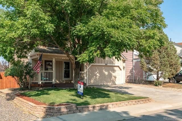 9819 Garwood Street, Littleton, CO 80125 (#2856551) :: Symbio Denver