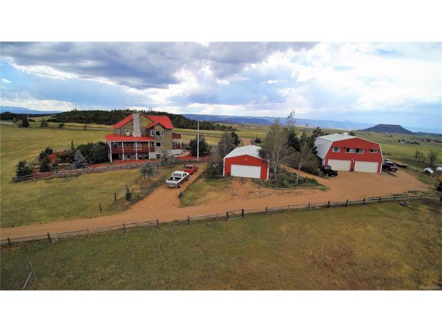 5315 Best Road, Larkspur, CO 80118 (MLS #2858622) :: 8z Real Estate