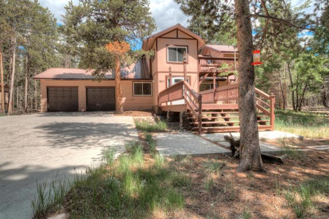 862 Turquoise Street, Leadville, CO 80461 (#2858887) :: Structure CO Group