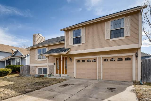 11938 W Aqueduct Drive, Littleton, CO 80127 (MLS #2865026) :: Bliss Realty Group