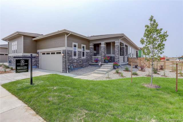 1946 Canyonpoint Lane, Castle Pines, CO 80108 (#2875896) :: Hudson Stonegate Team