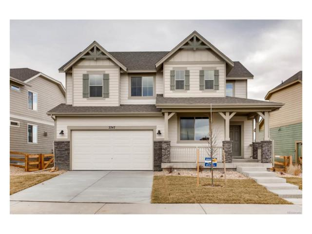 2747 Saltbrush Drive, Loveland, CO 80538 (#2878125) :: Colorado Home Realty