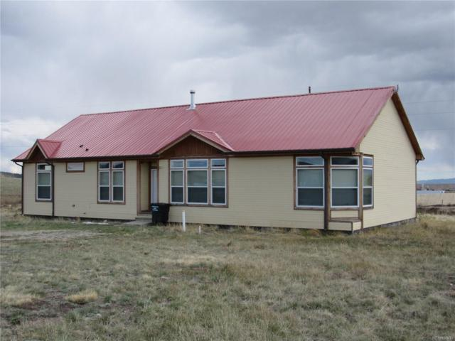 1309 Meadow Drive, Fairplay, CO 80440 (MLS #2880042) :: 8z Real Estate