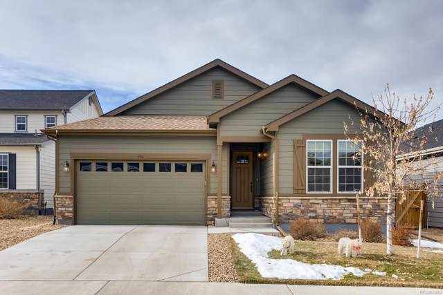 590 Tippen Place, Castle Rock, CO 80104 (#2880365) :: The Peak Properties Group