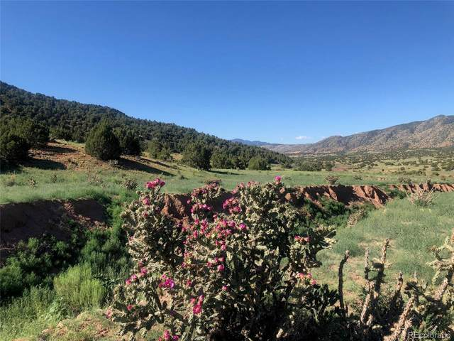 County Rd 69, Canon City, CO 81215 (#2880484) :: The Gilbert Group