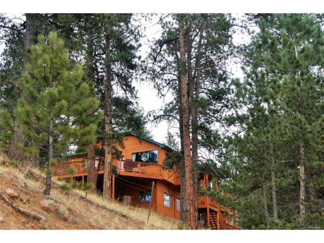 11902 S Elk Creek Road, Pine, CO 80470 (MLS #2882690) :: 8z Real Estate