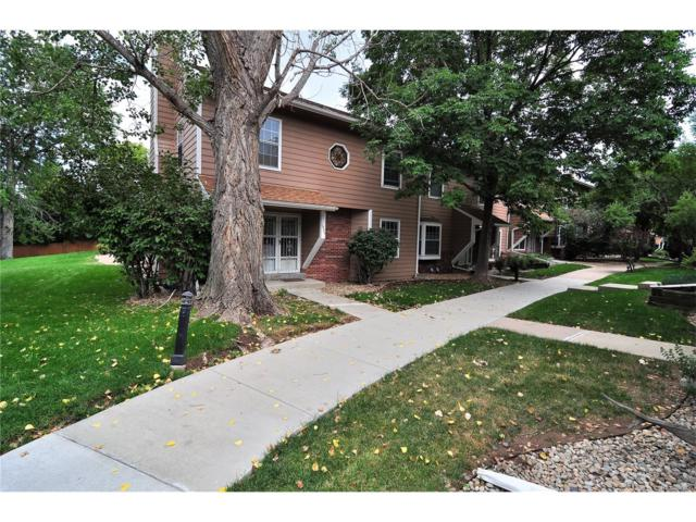 1924 S Balsam Street, Lakewood, CO 80227 (MLS #2883354) :: 8z Real Estate
