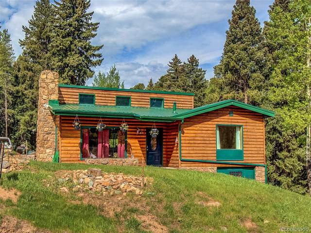 28233 Meadow Trail, Conifer, CO 80433 (#2884035) :: The DeGrood Team
