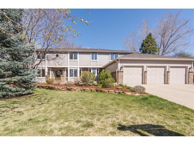 4071 S Zephyr Court, Lakewood, CO 80235 (MLS #2884453) :: 8z Real Estate