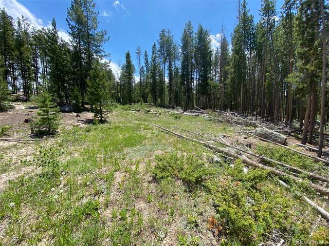 91 Gcr 4792, Grand Lake, CO 80447 (#2885659) :: James Crocker Team