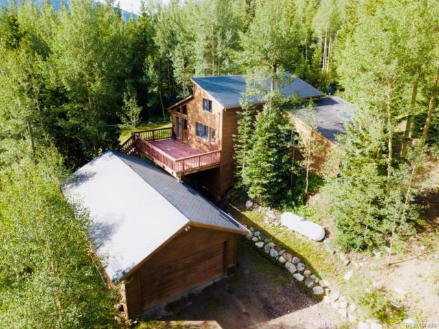 246 Roberts Road, Fairplay, CO 80420 (MLS #2886948) :: 8z Real Estate