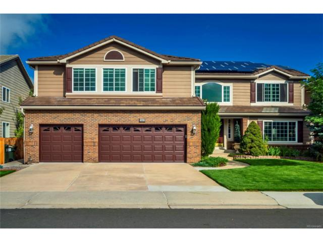 10503 Grizzly Gulch, Highlands Ranch, CO 80129 (MLS #2887768) :: 8z Real Estate