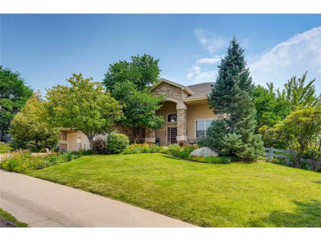 2442 W Dry Creek Court, Littleton, CO 80120 (MLS #2888485) :: 8z Real Estate
