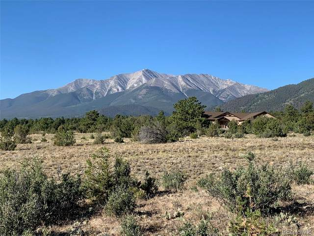 30093 Elk Meadow, Buena Vista, CO 81211 (#2889252) :: My Home Team