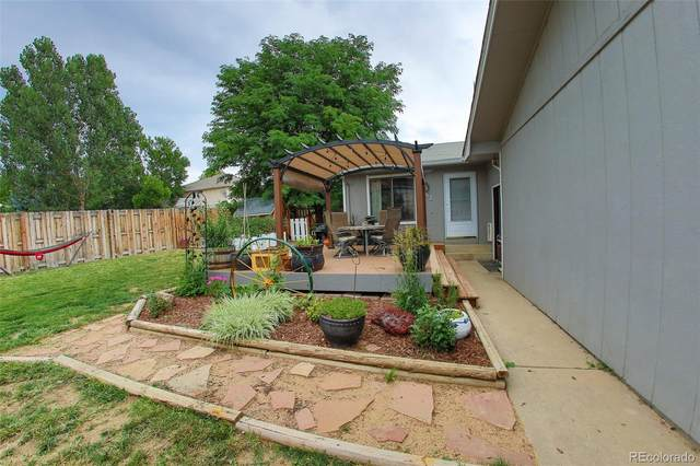 552 Cora Place, Loveland, CO 80537 (MLS #2896081) :: 8z Real Estate