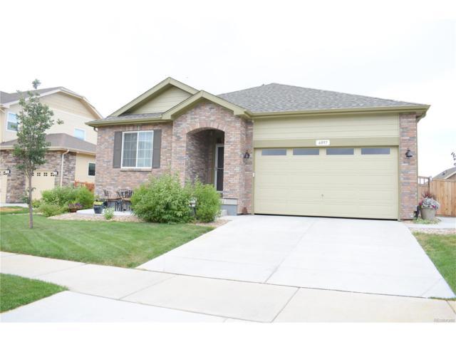 6097 N Flanders Street, Aurora, CO 80019 (MLS #2896875) :: 8z Real Estate
