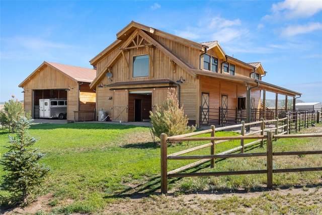 11524 Spruce Mountain Road, Larkspur, CO 80118 (MLS #2896878) :: 8z Real Estate