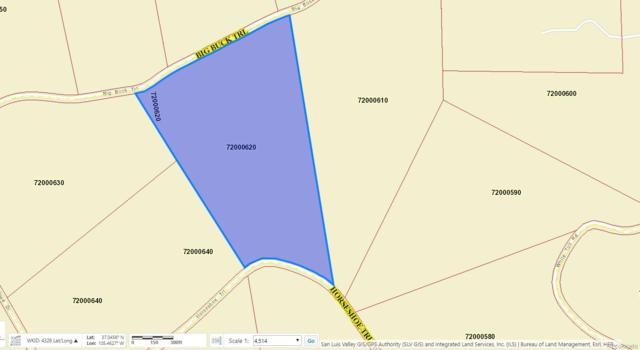 000 Horseshoe Trail, San Luis, CO 81152 (#2903686) :: The Tamborra Team