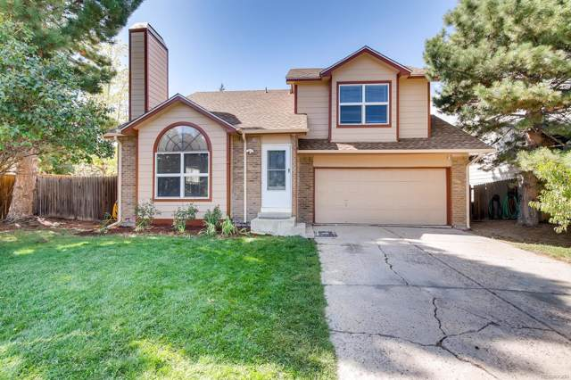 5741 Wagonwheel Trail, Castle Rock, CO 80104 (#2904095) :: Arnie Stein Team | RE/MAX Masters Millennium