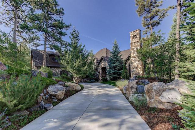 988 Preston Court, Castle Rock, CO 80108 (#2907169) :: Wisdom Real Estate
