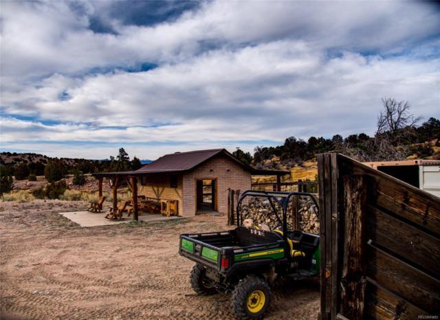 County Ro Rural, Coal Creek, CO 80403 (MLS #2908866) :: Bliss Realty Group