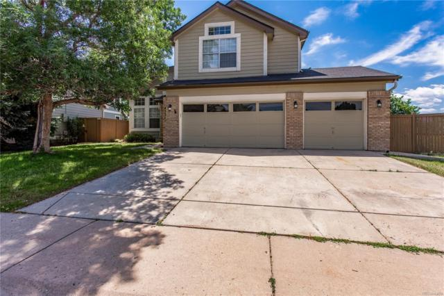 4531 N Blazingstar Trail, Castle Rock, CO 80109 (#2909301) :: The Pete Cook Home Group