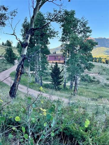 War Eagle Place, Cripple Creek, CO 80813 (#2916930) :: James Crocker Team