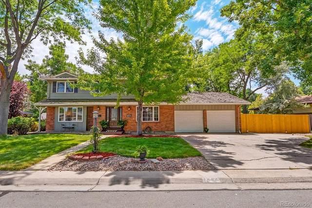 7386 S Platte Canyon Drive, Littleton, CO 80128 (MLS #2917161) :: Bliss Realty Group