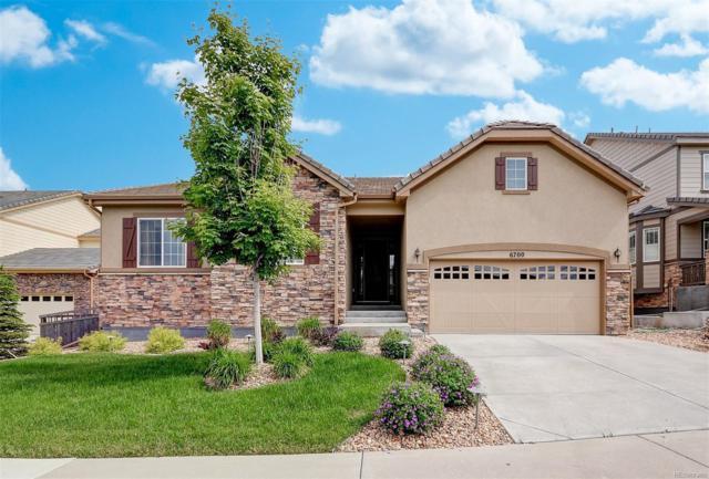6700 Esmeralda Drive, Castle Rock, CO 80108 (MLS #2919925) :: 8z Real Estate