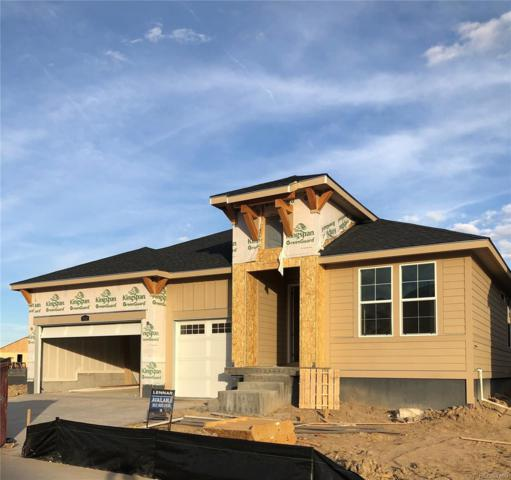 7043 Hyland Hills Street, Castle Pines, CO 80108 (#2920052) :: The DeGrood Team